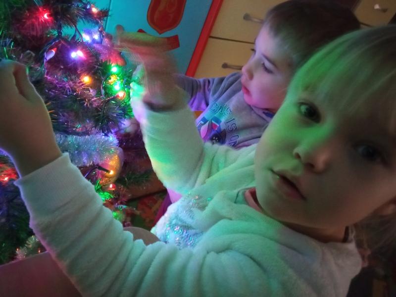 Fiołki – przygotowania do Świąt